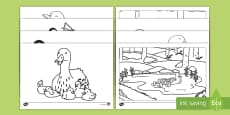 * NEW * Ducks and Ducklings Colouring Pages