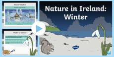 ROI Irish Nature in Winter PowerPoint