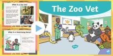 The Zoo Vet eBook - Original Children's Story - EYFS/KS1