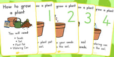 How to Grow a Plant Posters (Australia)