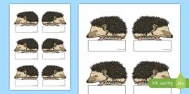 Hedgehog Editable Self Registration