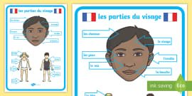 French Body Parts Vocabulary Cards - French Language