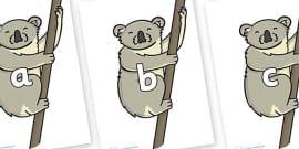 Phase 2 Phonemes on Koalas