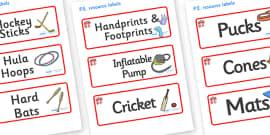 Dragon Themed Editable PE Resource Labels