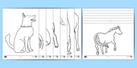 Farm Animal Colouring Sheets (Black & White, A4)