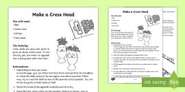 Growing Cress Diary Writing Frame - growing cress, diary