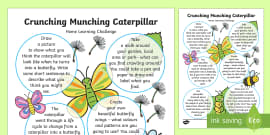 EYFS Home Learning Challenge Sheet Reception FS2 to Support Teaching on The Crunching Munching Caterpillar
