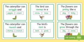 The Caterpillar Can... Rhyming Sentence Word Cards
