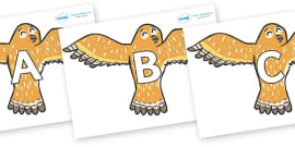 A-Z Alphabet on Owls