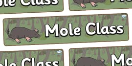 Mole Themed Classroom Display Banner