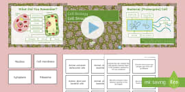 KS3 Biology Specialised Cells Display Posters (teacher made)