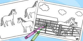 T T Horses and Ponies Colouring Pages