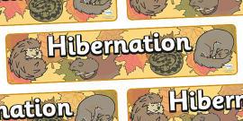 Hibernation Display Banner