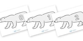 Numbers 0-31 on Polar Bears