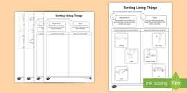 Sorting Living Things Non Living Things Science Lesson
