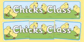 Chicks Themed Classroom Display Banner