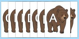 A-Z Alphabet on Bear