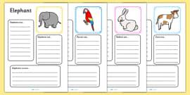 sorting animals into sets worksheet worksheet sorting. Black Bedroom Furniture Sets. Home Design Ideas