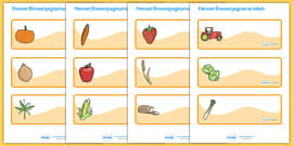 Editable Drawer - Peg - Name Labels (Harvest)