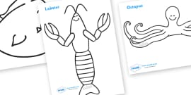 Colouring Sheets to Support Teaching on Commotion In The Ocean