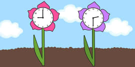 Clock Faces on Flowers