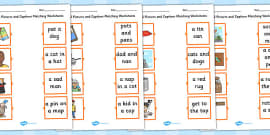 Phase 2 Pictures and Captions Matching Activity Sheets