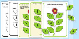 Number Matching Plant Activity