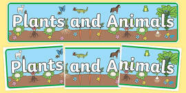 Plants and Animals Display Banner