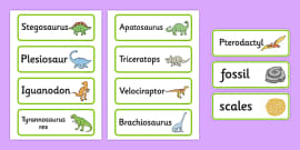 Dinosaurs Word Cards