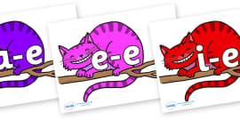 Split Digraphs on Cheshire Cats