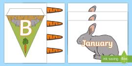Rabbit Themed Birthday Display Pack