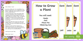 Make a Seed Ball Craft Instructions - Gardening, Seed, Plant
