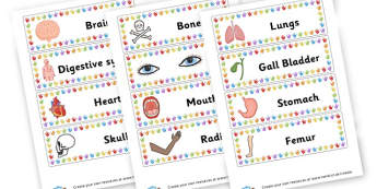 Body labels - My Body Labels Primary Resources, our body, bodies, growth