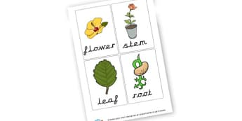 Plant Tag Labels