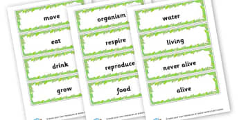 Living Processes Word Cards - Life Processes Primary Resources, MRS GREN, respiration, growth