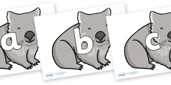 Phoneme Set on Wombat - Phoneme set, phonemes, phoneme, Letters and Sounds, DfES, display, Phase 1, Phase 2, Phase 3, Phase 5, Foundation, Literacy