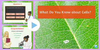 Cells Quiz PowerPoint - Cells, Organisation, Cytoplasm, Nucleus, Animal Cell, Plant Cell, Chloroplast
