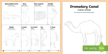 Arabian Animals Dot to Dot Worksheet / Activity Sheet - Science, UAE, animals, living, world, Arabian, leopard, camel, falcon, oryx, saluki, lizard, sand, m