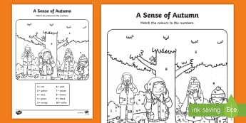 A Sense of Autumn Colour by Number Activity Sheet - A, Sense, of, Autumn, seasons, worksheet, Aistear, school trip, forest, blackberries, squirrels, lea