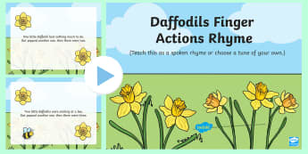 Daffodils Finger Action Rhyme Song PowerPoint - EYFS, Early Years, Key Stage 1, KS1, spring, plants and growth, flowers, seasons, weather, rainbow,