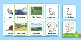 Canadian Animals & Habitat Matching Cards  - Grade 1 Social Studies, animal, habitat, canada, arctic, lake, farm, forest