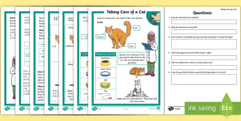 KS1 How To Look After A Cat Differentiated Go Respond Worksheet / Activity Sheets English/Mandarin Chinese - Pets, pet, EYFS, KS1, take, care, look, after, family, member, members, vet, vet surgery, surgery, i