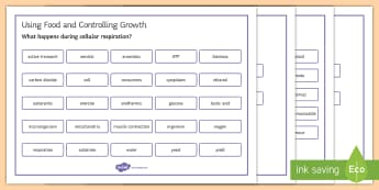 OCR 21st Century Combined Science Using Food and Controlling Growth Word Mat - Word Mat, gcse, biology, respiration, respire, cellular respiration, aerobic, anaerobic, ATP, micros