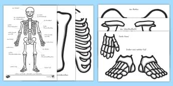 Sachunterricht Körper und Gesundheit Primary - Page 5