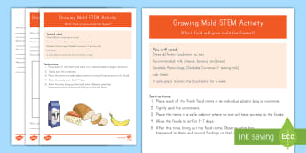 Growing Mold STEM Activity - science experiment, organisms, health, hygiene, food