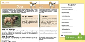 Dogs Reading Comprehension English/Italian - Dogs Reading Comprehension - Reading comprehension, dog, find, locate, read, comprehend, fact, title