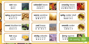 Autumn Senses Word Cards English/Mandarin Chinese/Pinyin - Autumn Senses Word Cards - autumn, senses, word cards, word, cards,autmn,atumn,atumn,atumn,aurum,aur