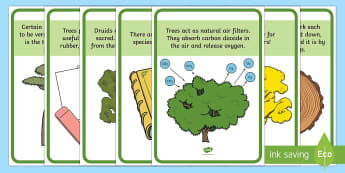 Tree Facts Display Posters - ROI- National Tree Week 5th - 12th March, trees, ireland, ash, oak, beech, sycamore, horse chestnut,