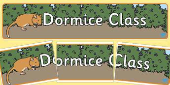 Dormice Class Banner - dormice, class banner, display, banner