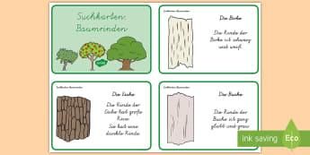 Suchkarten: Baumrinde : DIN A4 Karteikarten - DE Herbst (Autumn), Jahreszeiten, Baum, Wald, Natur, Suchkarten, Kl.1/2,German